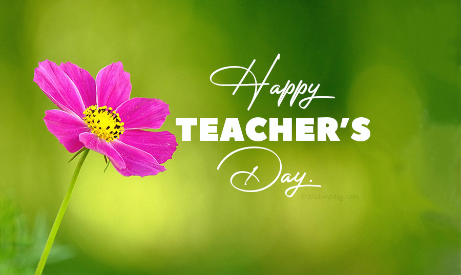 Happy Teachers' Day 2020: Wishes and Quotes to express gratitude to your teachers